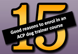 15 good reasons to enrol in an ACP dog trainers course