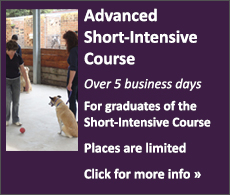 Advanced Full-Time Dog Trainer's Course