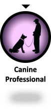 YOU ARE HERE: Alpha Canine Professional - educational dog trainer courses and seminars for professionals